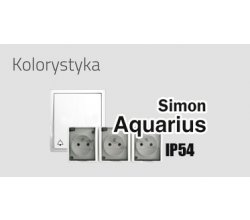 Simon Aquarius